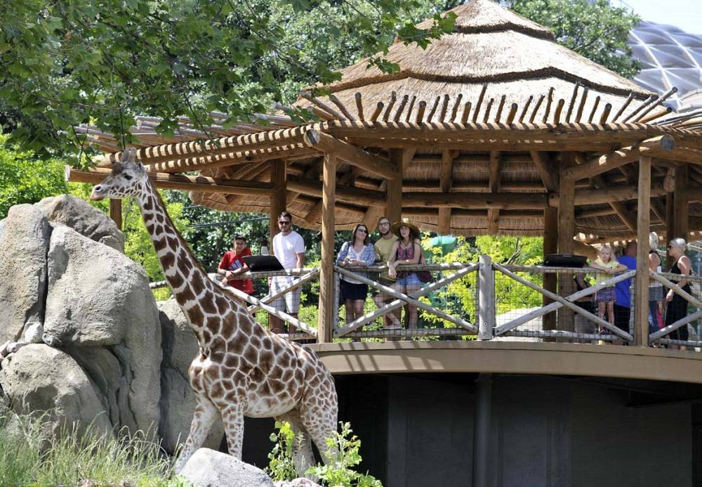 Henry Doorly Zoo - African Grasslands