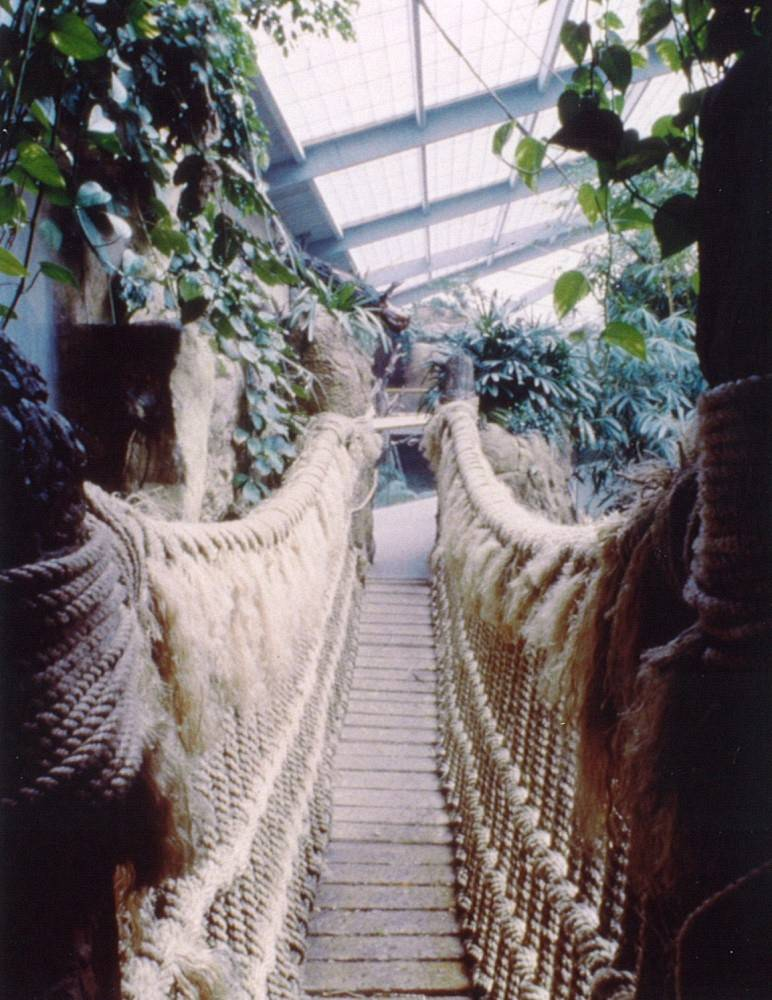 Henry Doorly Zoo - Lied Jungle Building