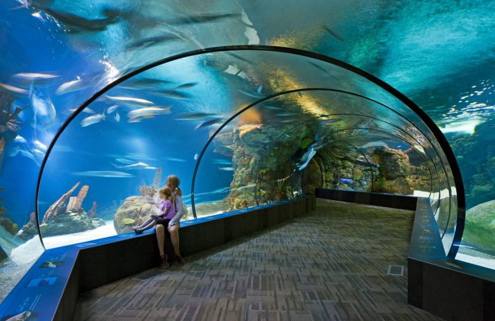Henry Doorly Zoo - Suzanne and Walter Scott Aquarium and Conference Center